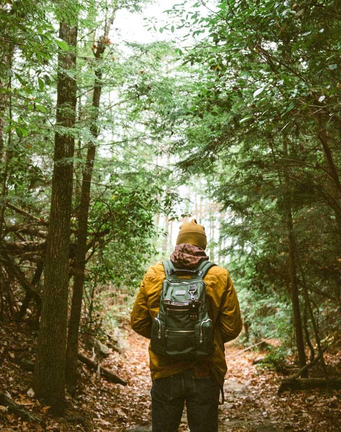 jeune homme se promenant dans une forêt